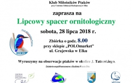 Spacer ornitologiczny